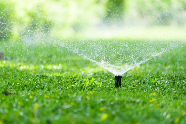 water conservation in landscape
